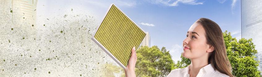 Filtrul antialergenic: Cea mai bună soluție împotriva alergenilor și a prafului fin